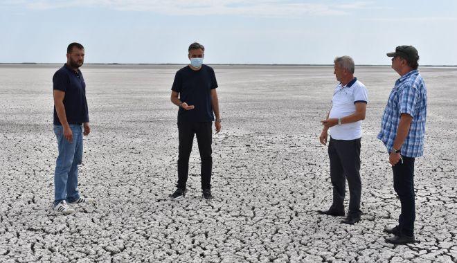 """Foto: O șansă pentru salvarea lacului Nuntași. """"Avem datoria morală de a reface ecosistemul!"""""""