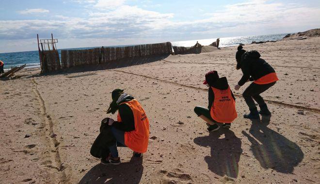 Foto: Plajele de pe litoral, sufocate de deșeuri