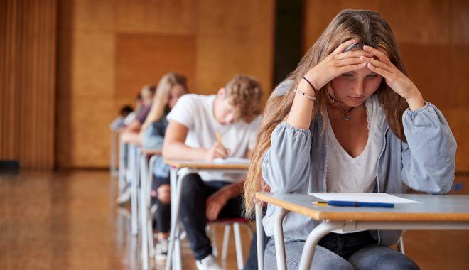 Pregătire online pentru Bac. Elevii din Constanța, instruiți de profesorii de la Universitatea
