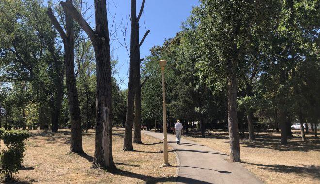 Registrul spaţiilor verzi, finalizat după nouă ani de măcel al parcurilor - fotofondregistrulspatiilorverzi1-1602523998.jpg