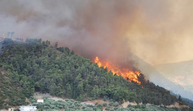 Incendii de vegetație în Grecia, Atena a cerut ajutorul UE - grecia-1314385659.jpg