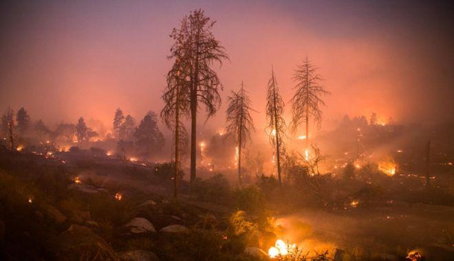 Foto: Incendiu în SUA: 42 de morți,  bilanțul cel mai grav din istoria Californiei