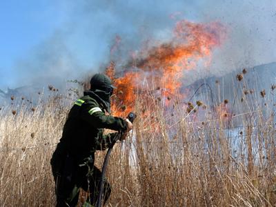 Incendiu uriaș la Cobadin - incendiu-1315342326.jpg