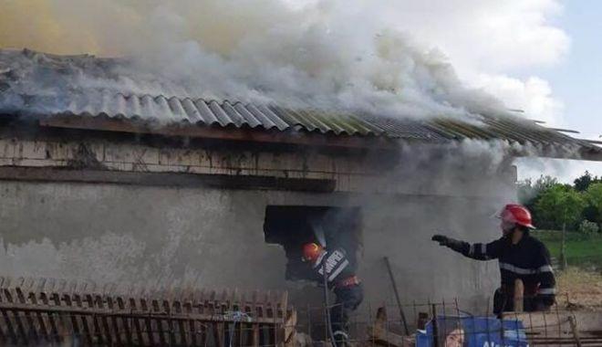 Foto: Incendiu puternic la Tariverde. Intervin zeci de pompieri. Mai multe animale sunt prinse în interiorul grajdului care arde