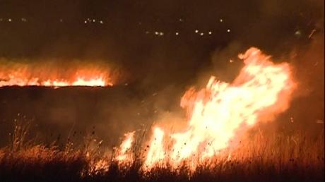 Foto: Anchetă la Constanța după incendiul devastator din Delta Dunării VIDEO