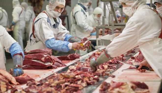 Foto: Românii care muncesc în industria cărnii în Germania vor semna contracte de muncă direct cu angajatorii germani