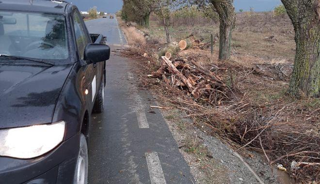 GALERIE FOTO / Inundaţii şi copaci căzuţi pe mai multe drumuri, în Constanţa - inundatii2-1603704437.jpg