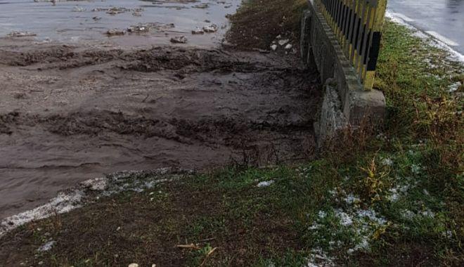 GALERIE FOTO / Inundaţii şi copaci căzuţi pe mai multe drumuri, în Constanţa - inundatii4-1603704460.jpg