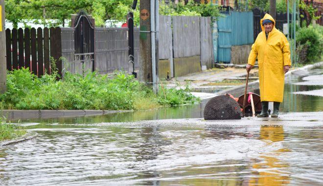 Ploaia face ravagii la Constanța. Copaci căzuți și inundații în tot județul - inundatiipalas5-1594137860.jpg