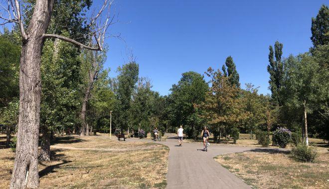Registrul spaţiilor verzi, finalizat după nouă ani de măcel al parcurilor - jos-1602525523.jpg