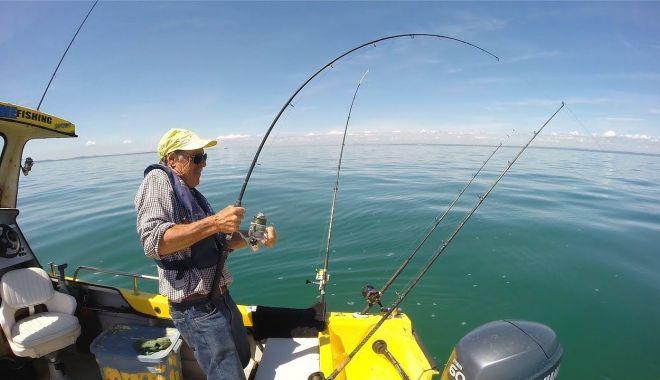 La pescuit… - lapescuit-1582320685.jpg