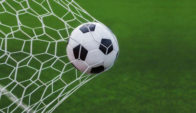 Fotbal - Liga I / Chindia Târgoviște - CSM Poli Iași 0-2, în play-out - minge-1593269941.jpg