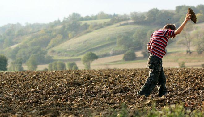 Foto: Stop exploatării prin muncă a minorilor!
