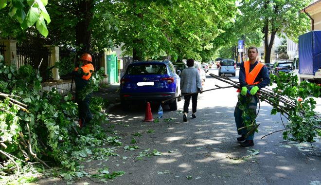 Nu vă mai parcați mașinile unde se toaletează copacii! - nuvamaiparcati-1557766335.jpg