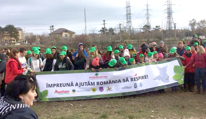 Foto: Oază de verdeață la Eforie Nord. Voluntarii au plantat 5.000 de puieți