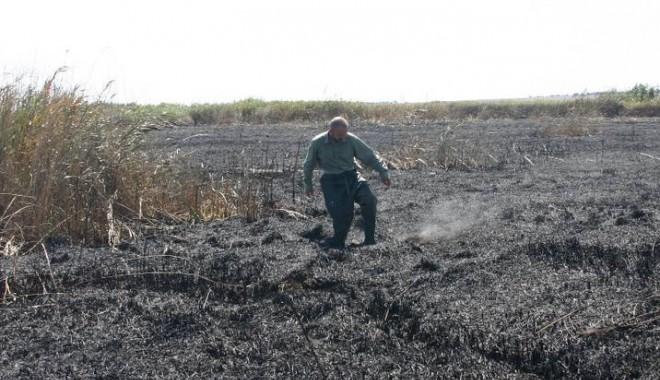Foto: Doi bărbați din zona Vadu, văzuți că întrețineau focul la stuf