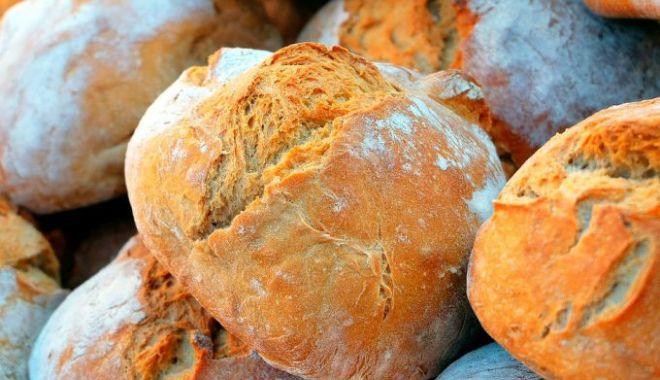 Foto: Producția de grâu a scăzut cu 40%. Cum va fi afectat prețul pâinii
