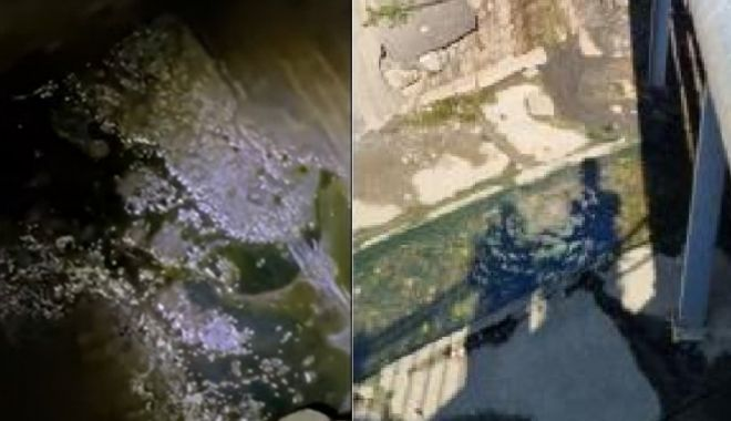 Turiştii dintr-o staţiune balneară au sunat la 112 după ce au observat produse petroliere în pârâul care traversează zona - petrol-1631633828.jpg