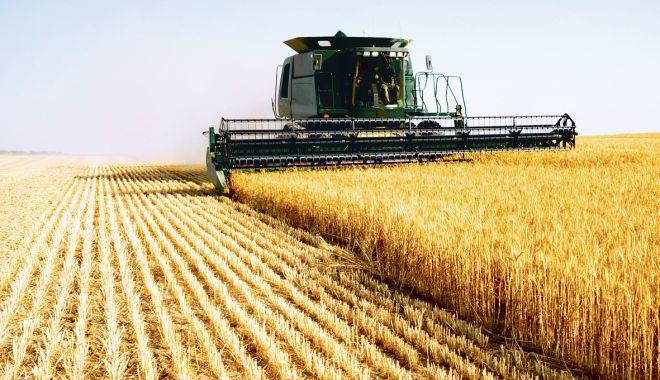 Foto: Piața terenurilor agricole mustește de oferte. Iată prețurile cerute de vânzători!