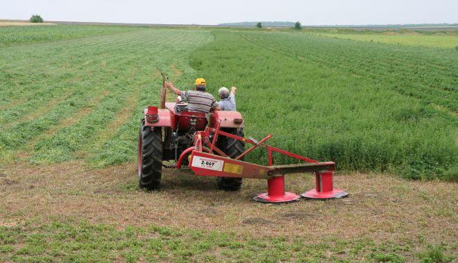 Foto: Piața terenurilor agricole nu s-a speriat de COVID -19. Iată prețurile cerute de vânzătorii din județul Constanța!