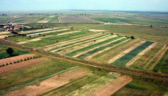 Terenuri agricole din Constanţa, scoase  la vânzare. Iată care este pulsul pieţei - piataterenuriloragricolesursacei-1603470106.jpg