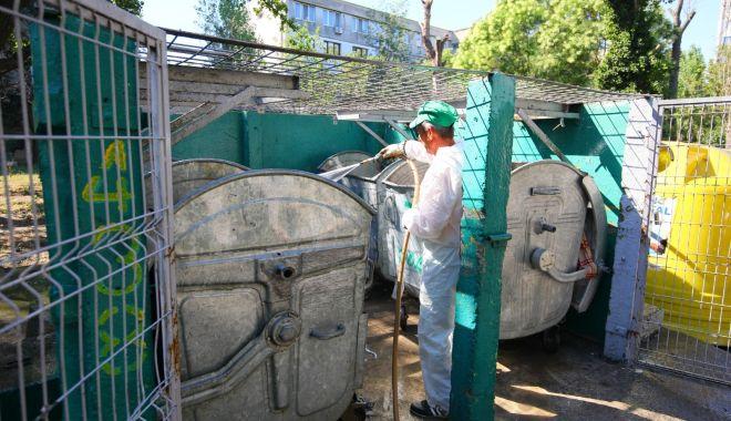 Platformele de deșeuri din Constanța, dezinfectate permanent - platformelededeseuri1-1598984138.jpg