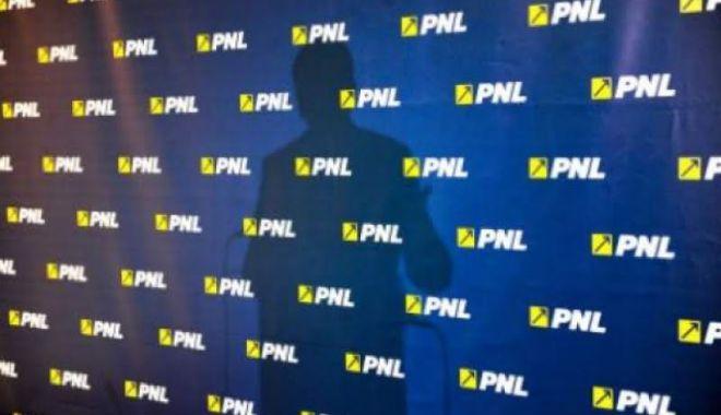 Foto: O actriță celebră intră în PNL și va candida la alegerile locale