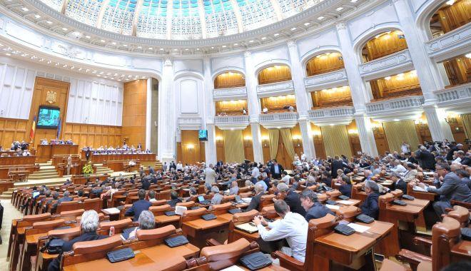 Foto: PNL și USR solicită revizuirea Constituției. Proiectul a fost depus în Parlament