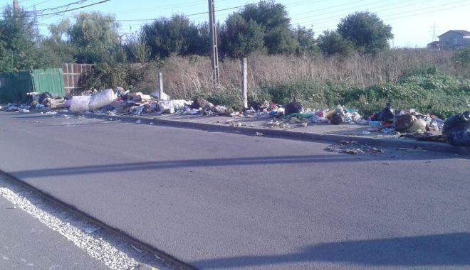 """Foto: Poliția Locală face """"curățenie"""". Amenzi în cartierul Palas"""