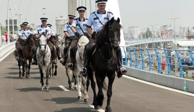 Consilierii județeni trimit polițiștii să învețe să călărească - politisticalarecopy-1325001785.jpg