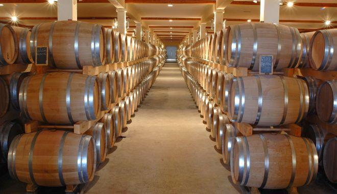 Producătorii de vin şi bere vor putea lua granturi - producatoriideberesivin-1614797522.jpg