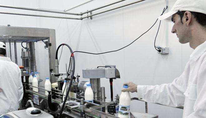 Foto: Producem mai puțin lapte și importăm mai mult