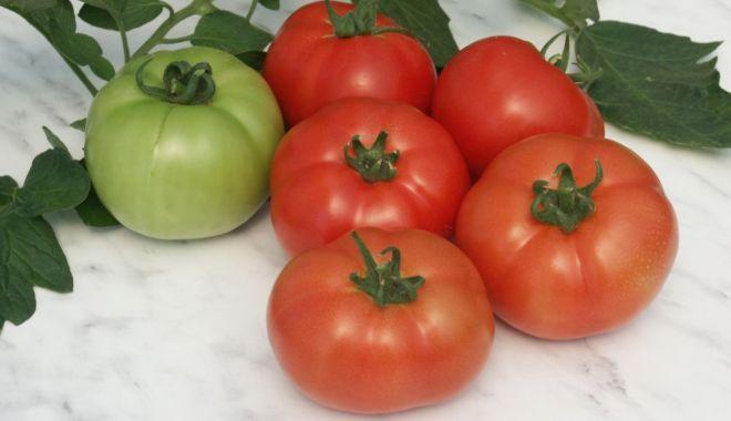 Programul tomata va continua în anul 2020 - programultomatavacontinuainanul2-1573998379.jpg