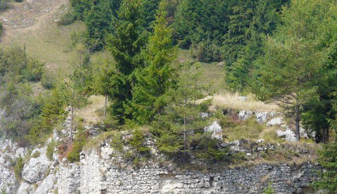 Fortificaţiile romane vor fi mai bine puse în evidenţă pe viitor - proiectsursaplecatdeacasa-1600951282.jpg
