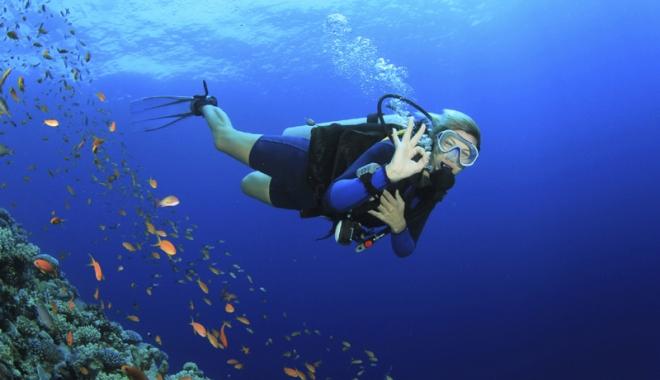 Foto: Scufundări pentru  o rezervație curată. Acțiune  de ecologizare  a Rezervației marine Vama Veche - 2 Mai