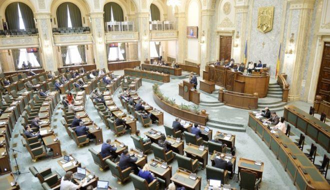 Foto: Senat: Proiectul privind dublul standard de calitate a produselor - azi, pe ordinea de zi