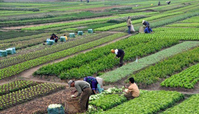 Foto: Se pregătesc noi schimbări în domeniul muncii
