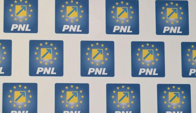Lista candidaților PNL la europarlamentare, validată de BPN - siglapnl-1552572040.jpg