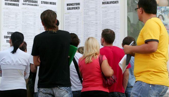 Foto: Șomajul scade în statistici, iar numărul celor ce fug de muncă sporește