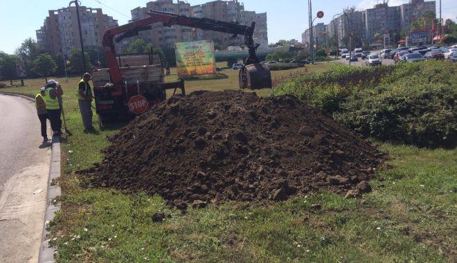 Foto: Lucrările de întreținere a spațiilor verzi din Constanța sunt în plină desfășurare!