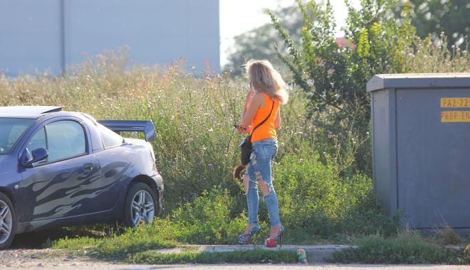 """Foto: Deputatul Stelian Ion: """"Prostituția de pe varianta Constanței trebuie eliminată"""""""