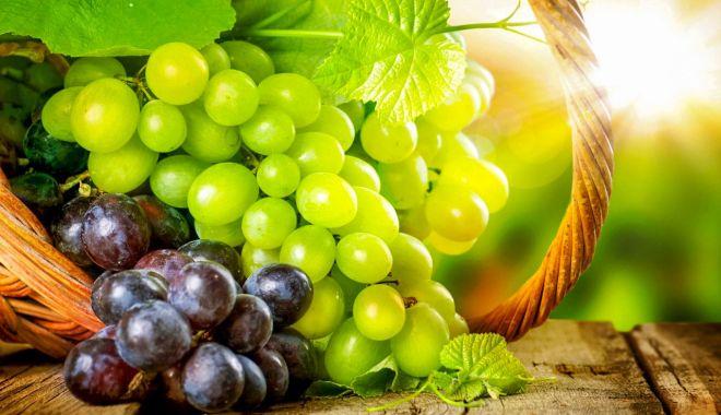 Sfatul medicului - Mâncați cât mai mulți struguri! Sunt un izvor de sănătate - struguri-1623070889.jpg