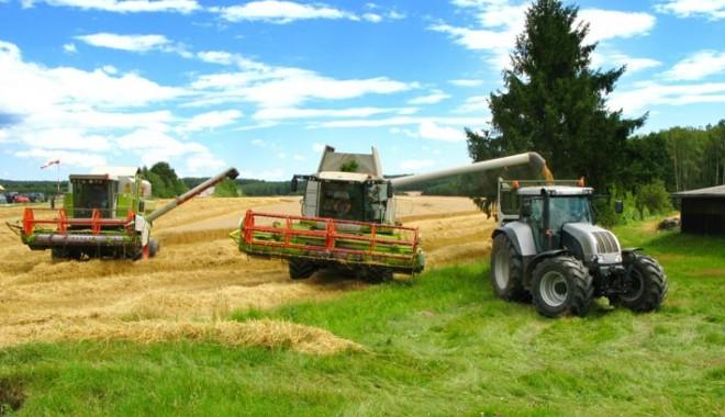 Foto: Agricultorii vor primi subvenția maximă: 170 euro la hectar