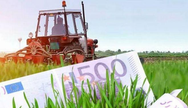 Foto: Subvenții în avans pentru agricultură