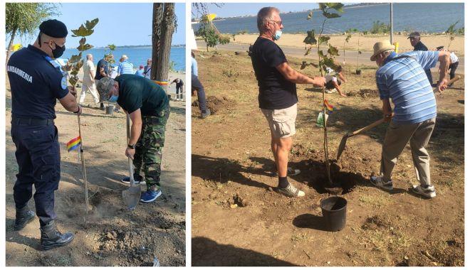 """""""Pădurea Veteranilor"""" la Techirghiol, în memoria militarilor căzuți în teatrele de operații - tab-1600616898.jpg"""