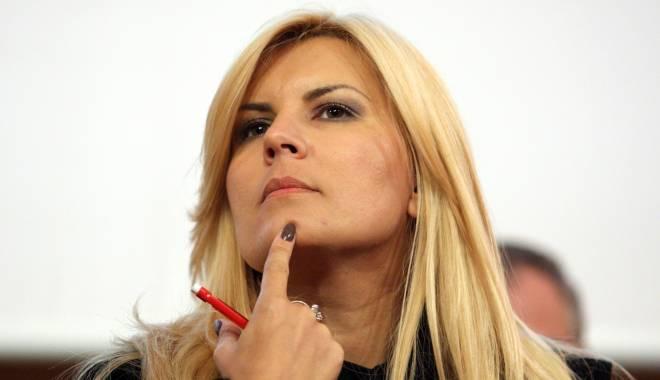 Foto: PNL va vota pentru ridicarea imunității Elenei Udrea