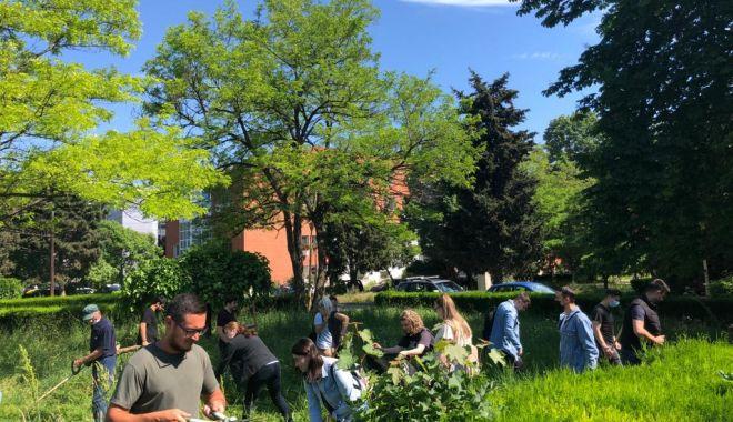 Pentru un oraș curat! Acțiune voluntară de ecologizare la Universitatea Maritimă Constanța - umc2-1623153232.jpg