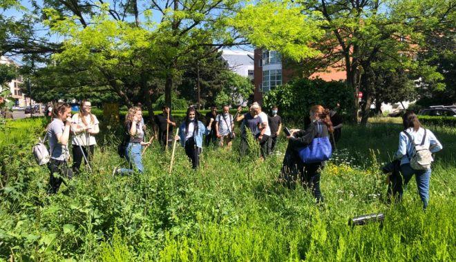 Pentru un oraș curat! Acțiune voluntară de ecologizare la Universitatea Maritimă Constanța - umc3-1623153241.jpg