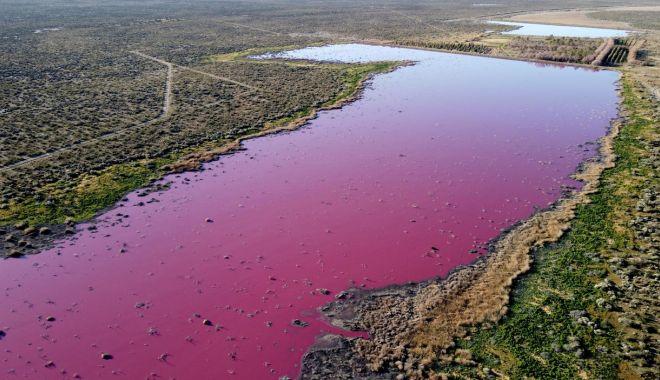 Un lac din Patagonia s-a făcut roz peste noapte - unlac1-1627390194.jpg