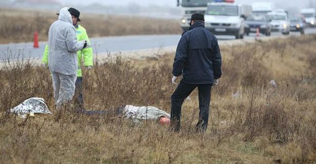 Foto: Descoperire macabră într-o curte din județul Constanța
